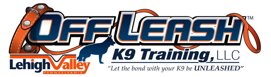 Lehigh Valley Off Leash K9 Dog Training
